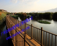 水上浮桥栈道3